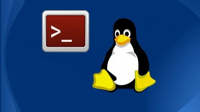 Unix / Linux - Environment - myTechMint