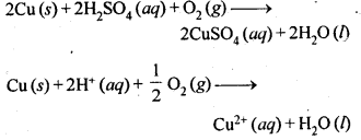 NCERT Solutions For Class 12 Chemistry Chapter 6 General Principles and Processes of Isolation of Elements-20
