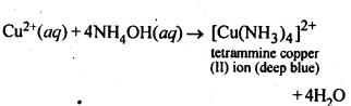 NCERT Solutions For Class 12 Chemistry Chapter 7 The p Block Elements-2