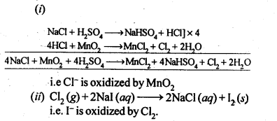 NCERT Solutions For Class 12 Chemistry Chapter 7 The p Block Elements-21