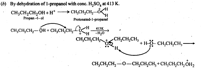 NCERT Solutions For Class 12 Chemistry Chapter 11 Alcohols Phenols and Ether-33