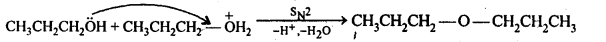 NCERT Solutions For Class 12 Chemistry Chapter 11 Alcohols Phenols and Ether-34