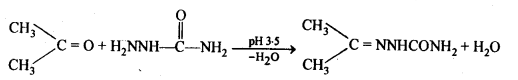 NCERT Solutions For Class 12 Chemistry Chapter 12 Aldehydes Ketones and Carboxylic Acids-16