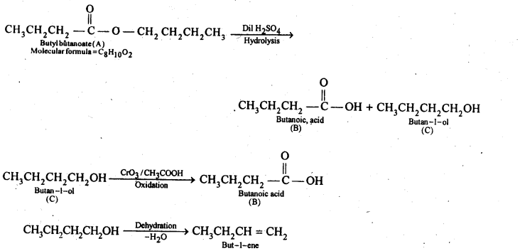 NCERT Solutions For Class 12 Chemistry Chapter 12 Aldehydes Ketones and Carboxylic Acids-34