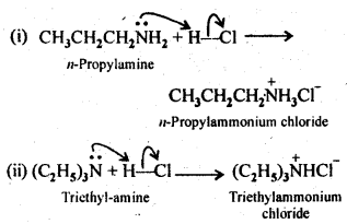 NCERT Solutions For Class 12 Chemistry Chapter 13 Amines-4