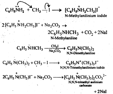 NCERT Solutions For Class 12 Chemistry Chapter 13 Amines-5