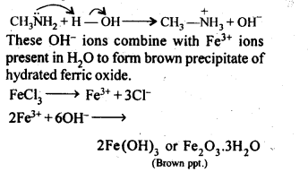 NCERT Solutions For Class 12 Chemistry Chapter 13 Amines-12