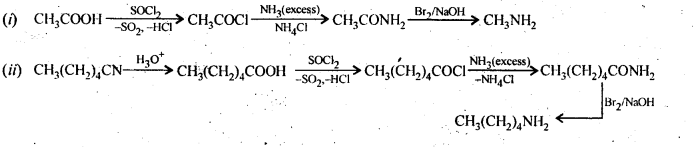 NCERT Solutions For Class 12 Chemistry Chapter 13 Amines-21