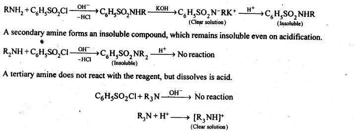 NCERT Solutions For Class 12 Chemistry Chapter 13 Amines-23