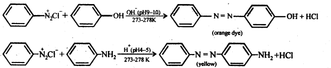 NCERT Solutions For Class 12 Chemistry Chapter 13 Amines-27