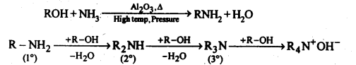 NCERT Solutions For Class 12 Chemistry Chapter 13 Amines-28