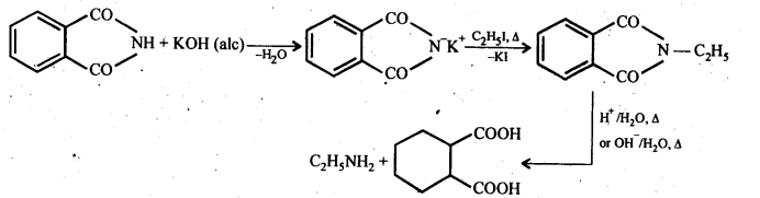 NCERT Solutions For Class 12 Chemistry Chapter 13 Amines-30