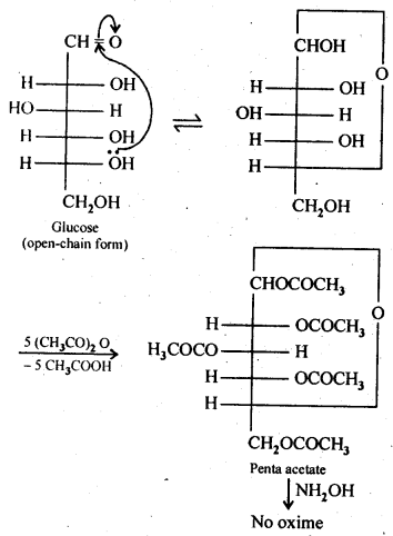 NCERT Solutions For Class 12 Chemistry Chapter 14 Biomolecules-2