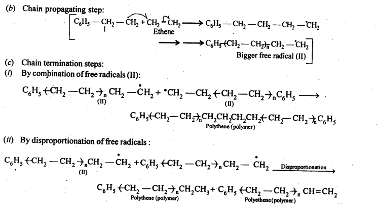 NCERT Solutions For Class 12 Chemistry Chapter 15 Polymers-4