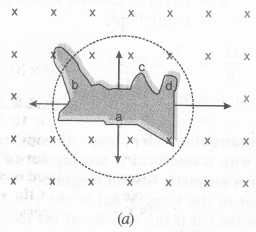 NCERT Solutions for Class 12 physics Chapter 6.2