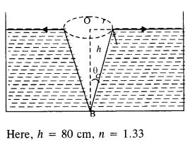 vedantu class 12 physics Chapter 9.5